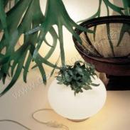 Настольная лампа ALT LuciAlternative 0107021023601